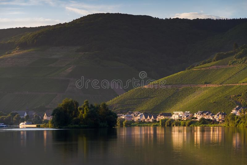 River Moselle and hills with grapes. Beautiful afternoon view of the river Moselle at the small wine growing town Zell an der Mosel with hills full of grape stock photography