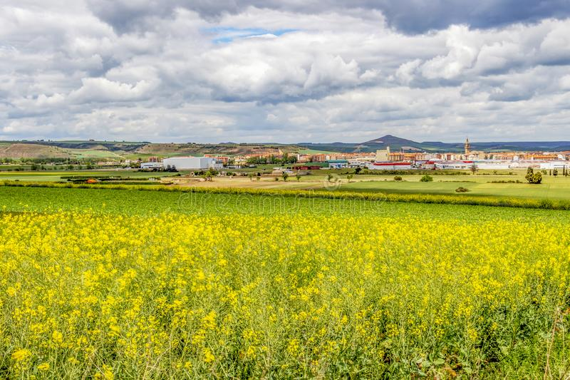 Beautiful agricultural landscape in La Rioja, Spain stock images