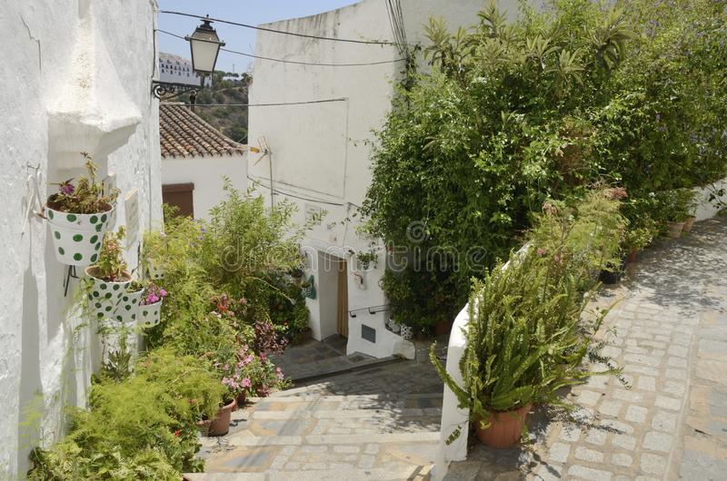 Beautiful alley in Casares. Casares, Spain - August 13, 2019: Prize 2015 to the better alley in the historic center of Casares, a mountain village of Malaga stock photo