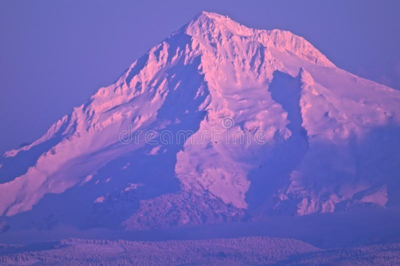 Beautiful pink alpen glow of Mount hood stock photo