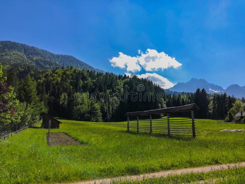Beautiful Alpine landscape of meadow and mountains in Slovenia royalty free stock image