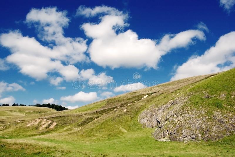 Download Beautiful Alpine Meadow With Green Grass Stock Photo - Image of stream, natural: 17515280