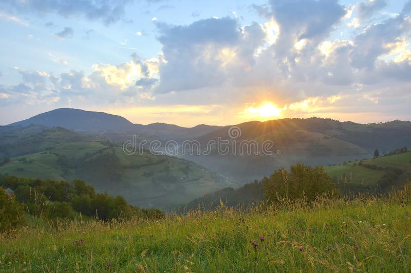 The Beautiful alpine meadow with green grass. sunrise. landscape on wild transylvania hills. Holbav. Romania. Low key, dark backgr. Beautiful alpine meadow with royalty free stock images