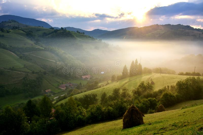 The Beautiful alpine meadow with green grass. sunrise. landscape on wild transylvania hills. Holbav. Romania. Low key, dark backgr. Beautiful alpine meadow with royalty free stock photography
