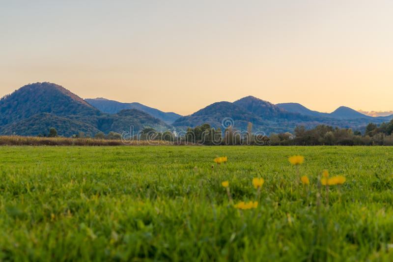 Beautiful alpine meadow in a mountain valley at sunset stock image