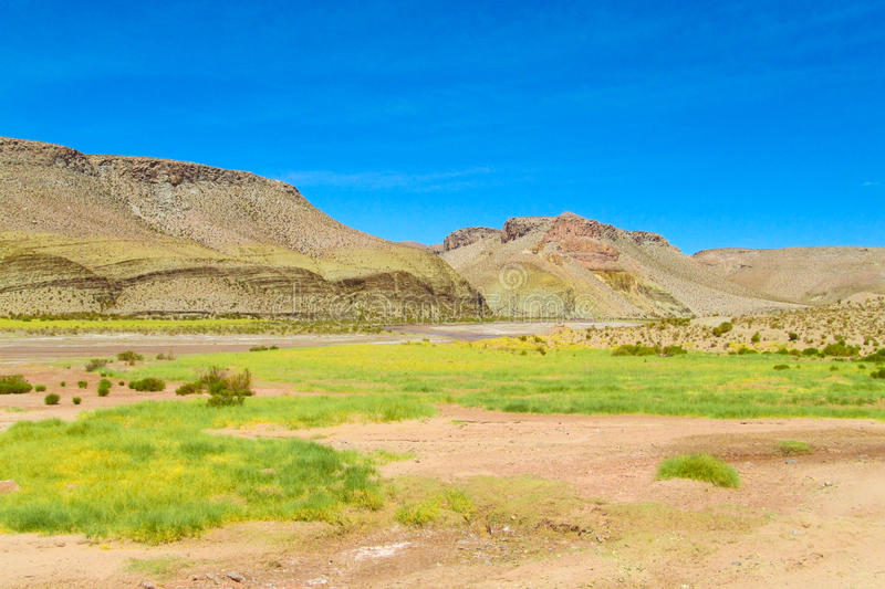 Beautiful altiplano. Beautiful mountain at altiplano in north Argentina and Chile border royalty free stock images