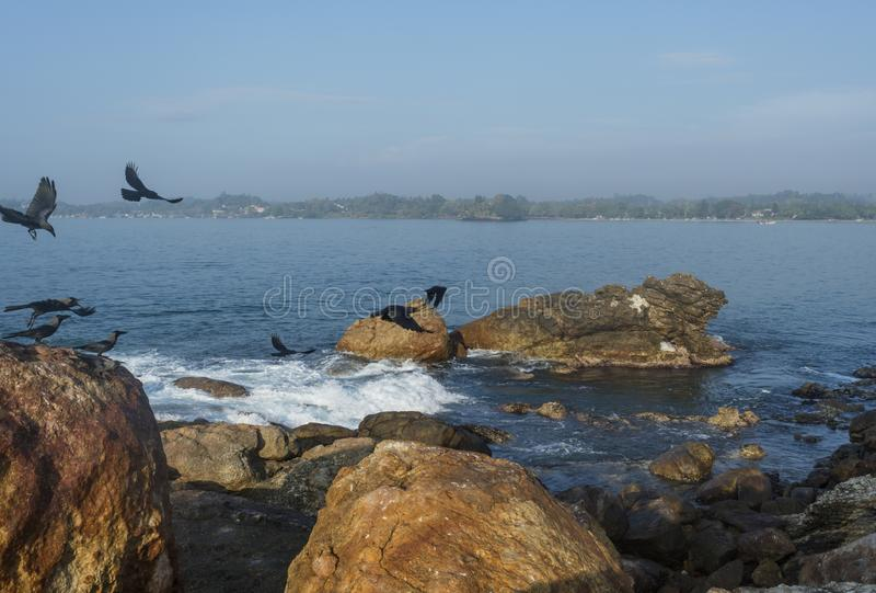 Beautiful amazing landscape of rocks in ocean and crows royalty free stock photography