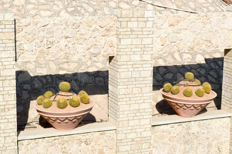 Ancient textural wall of brown stones and bricks of different shapes with green plants and pots with cactus in a warm tropical res. Beautiful ancient textural royalty free stock photo