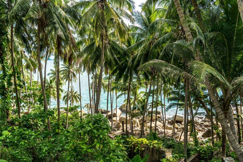 The beautiful andaman sea, bay and beach in Phuket Thailand.  stock image