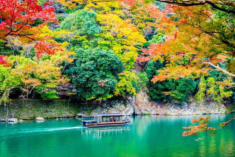 Beautiful Arashiyama river with maple leaf tree and boat around lake. In Autumn season Kyoto Japan royalty free stock photo