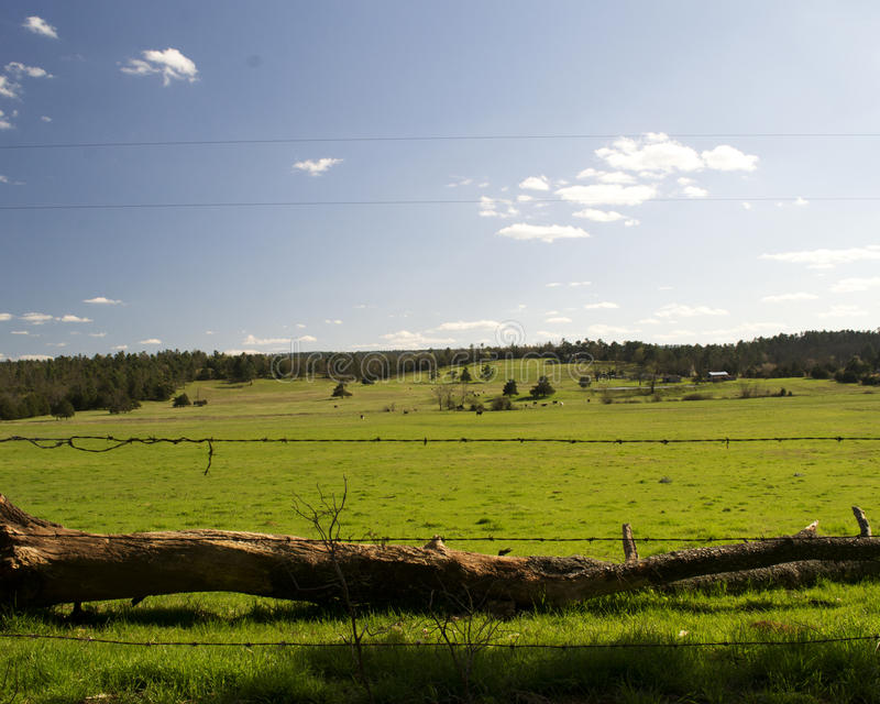 Beautiful Arkansas Country Landscape with Fence. Beautiful Arkansas country landscape with clear sky, green grassy field and a fence in the foreground royalty free stock images