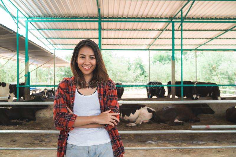 Beautiful asian woman or farmer with and cows in cowshed on dairy farm-Farming. royalty free stock images