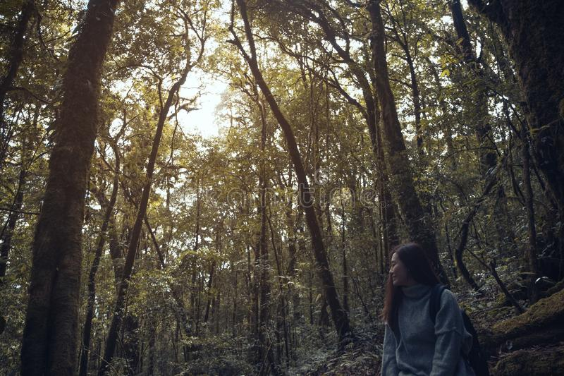 A beautiful Asian woman tourist trekking in tropical forest royalty free stock photo