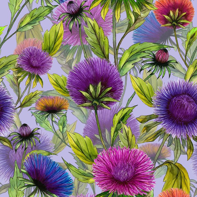 Beautiful aster flowers in different bright colors with green leaves on light lilac background. Seamless floral pattern. royalty free illustration