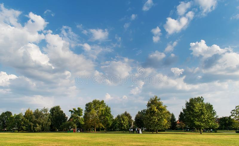 A beautiful August day in the park. A green field, a few trees in the distance under a beautiful blue sky sprinkled with clouds.  royalty free stock photography