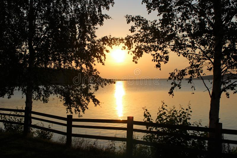 Beautiful August evening in Luleå. The sun is reflected in the bay on a beautiful August evening in the Northern Port of Luleå. Beautifully, birch royalty free stock photo