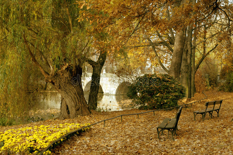 Beautiful autum city landscape. In Warsaw royalty free stock image
