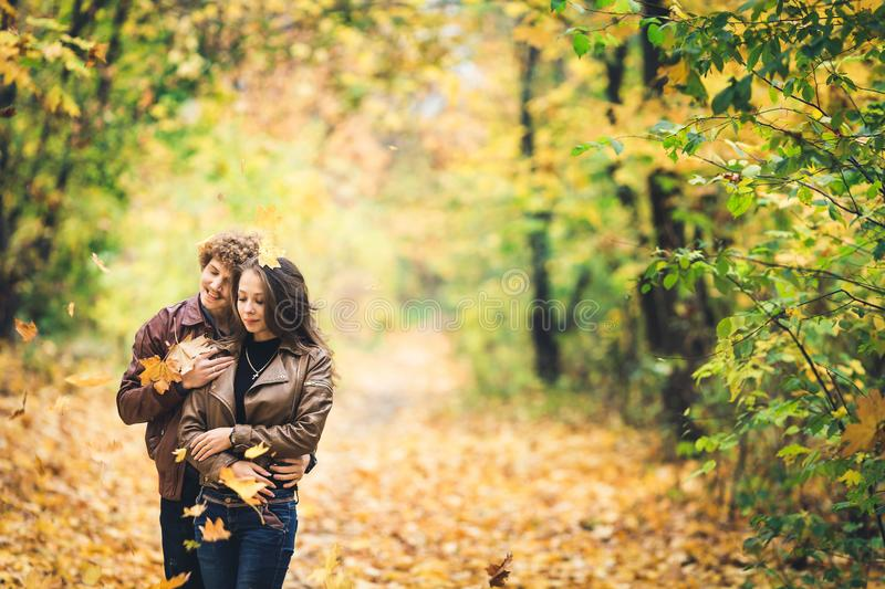 Beautiful autumn alley of maples. Loving couple embrace and yellow leaves fall on them. Beautiful autumn alley of maples. Loving couple embrace and yellow stock photography