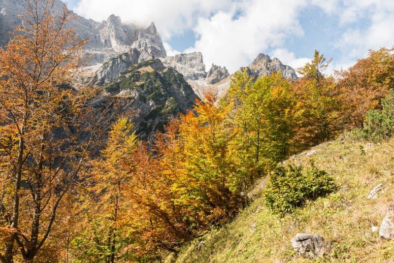 Beautiful Autumn in the Bavarian Alps. Germany stock photos