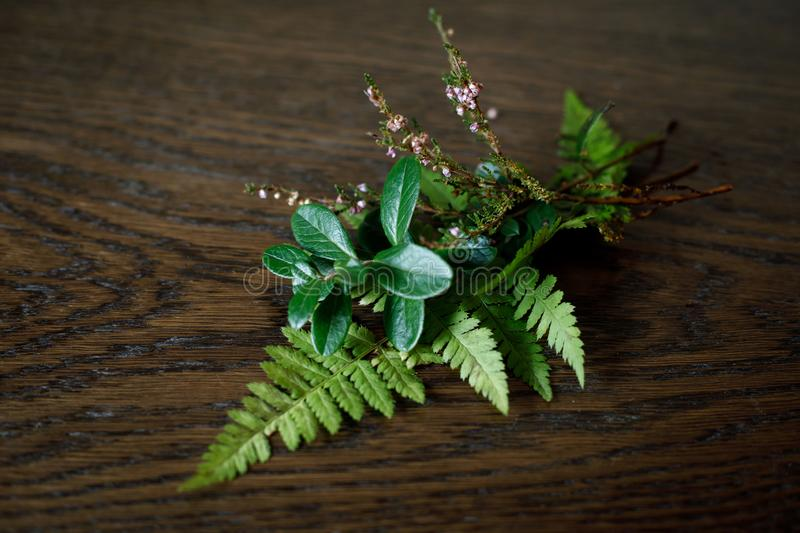 Beautiful autumn bouquet of the last green plants on a wooden surface. Lingonberry leaves, fern leaves and heather twigs. Close-up.  royalty free stock photography