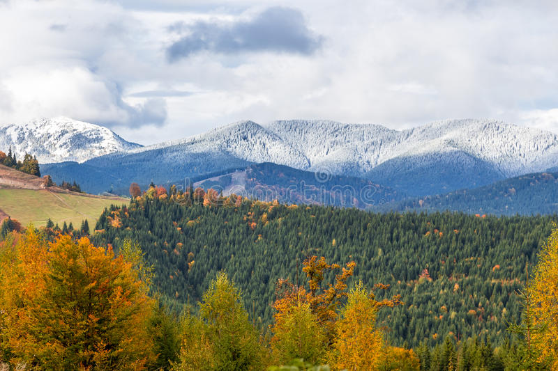 Beautiful autumn, a colorful mountain landscape with snow-capped peaks and yellow trees royalty free stock photos