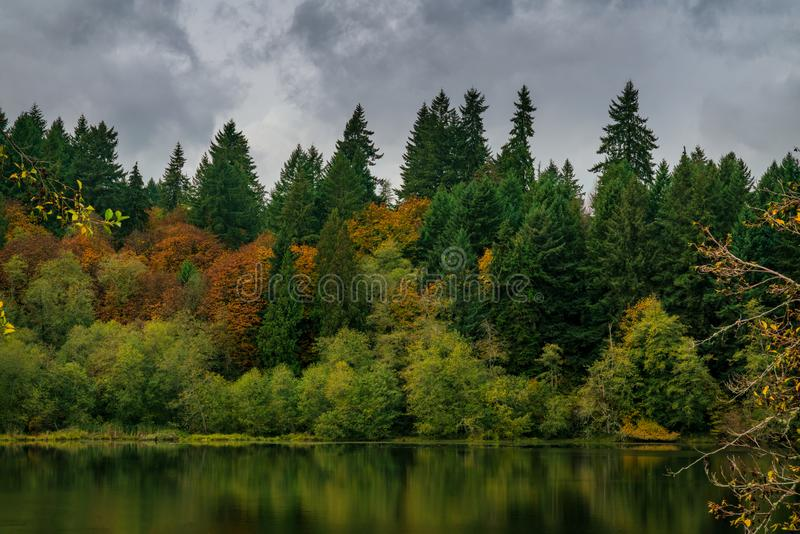 Capitol Lake Fall Foilage On Stormy Day. Beautiful Autumn Colors, Olympia, Washington, Capitol Lake Fall Foilage stock photo
