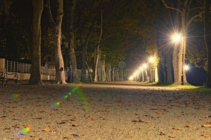 Beautiful autumn evening landscape in Lake Balaton. Amazing view of Plane-tree alley with illumination royalty free stock image
