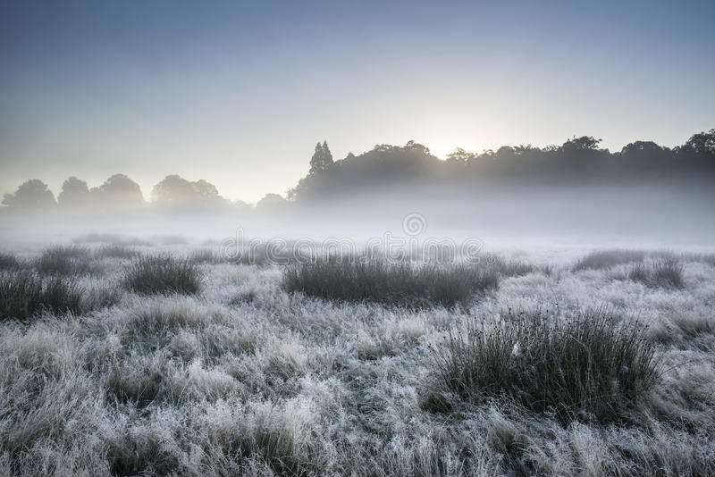 Beautiful Autumn Fall foggy dawn landscape over frost covered field and forest. Beautiful Autumn Fall sunrise foggy landscape over frost covered field and forest royalty free stock images