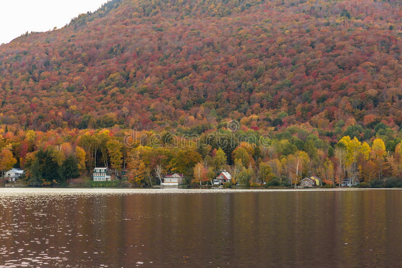 Beautiful autumn foliage and cabins in Elmore state park, Vermont stock images