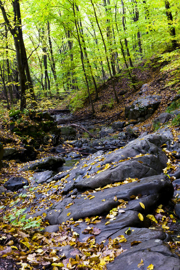 Download Beautiful Autumn Forest On The Mountain Cliffs. Royalty Free Stock Images - Image: 21762389