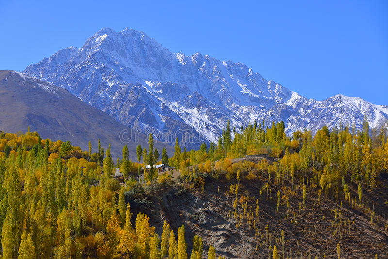 Beautiful Autumn at Ghizer Valley. Autumn at Ghizer Valley. Northern Pakistan royalty free stock photography