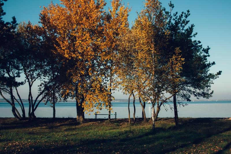 Beautiful autumn lake landscape and sunset. Blue waves and horizon line on water. Beautiful nature background. With yellow, red and green trees. Place for text royalty free stock photos
