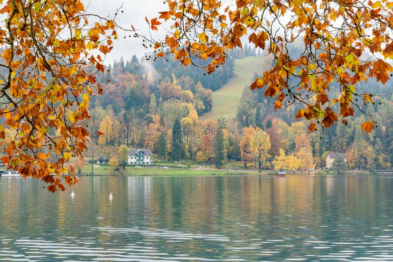 Beautiful autumn landscape around Lake Bled. At Slovenia royalty free stock photo