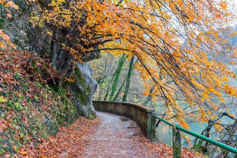 Beautiful autumn landscape around Lake Bled. At Slovenia royalty free stock photography