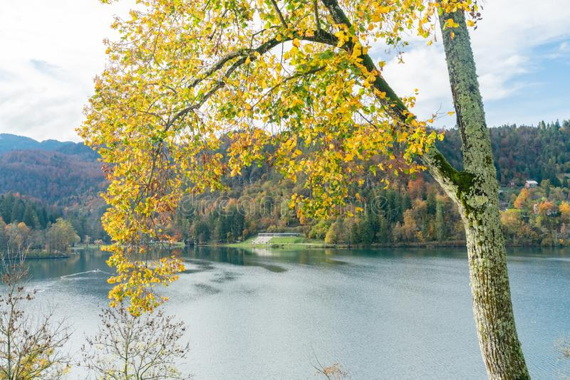 Beautiful autumn landscape around the tiny island of Lake Bled. At Slovenia stock images