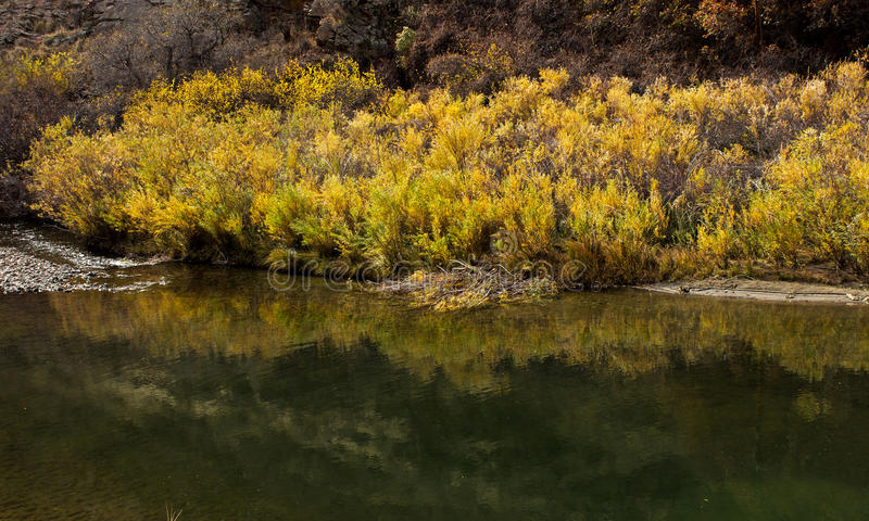 Beautiful autumn landscape in Colorado royalty free stock image
