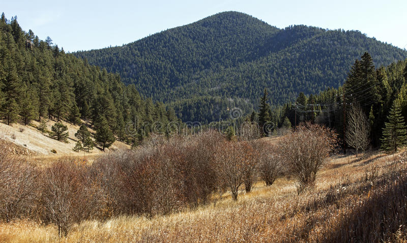 Beautiful autumn landscape in Colorado royalty free stock images