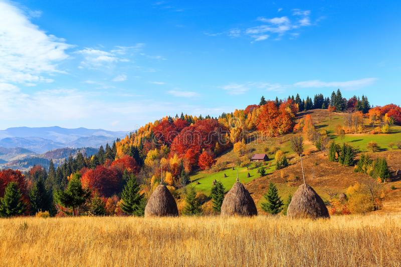 Beautiful autumn landscape with the green fair trees, orange coloured forest, high mountains and blue sky. stock images