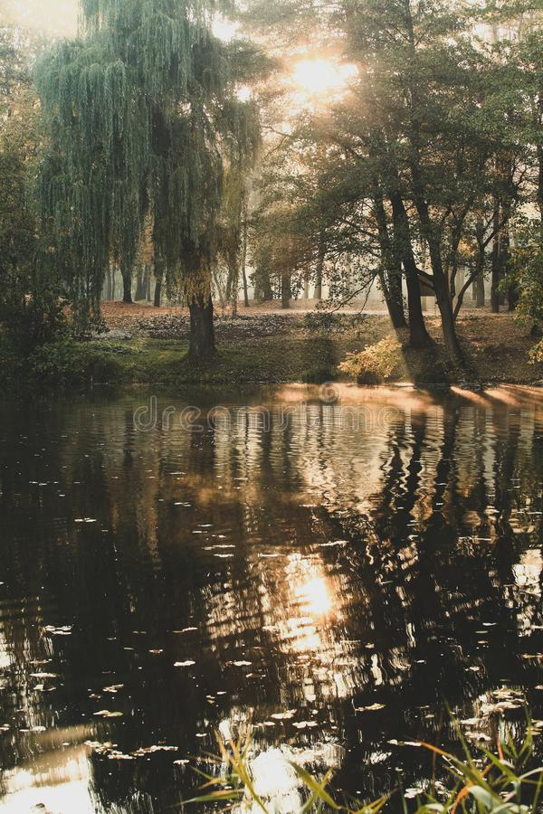 Beautiful autumn landscape. With lake stock image