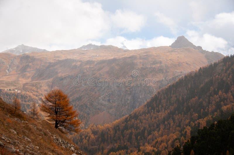 Beautiful autumn landscape with mountain peaks in Zermatt area stock photos