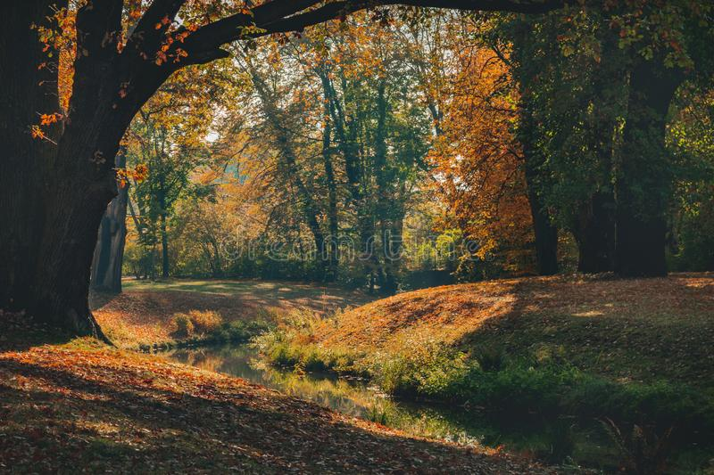 Beautiful autumn landscape with pleasant warm sunny light. Picture taken in Bad Muskau park, Saxony, Germany. UNESCO World royalty free stock photography