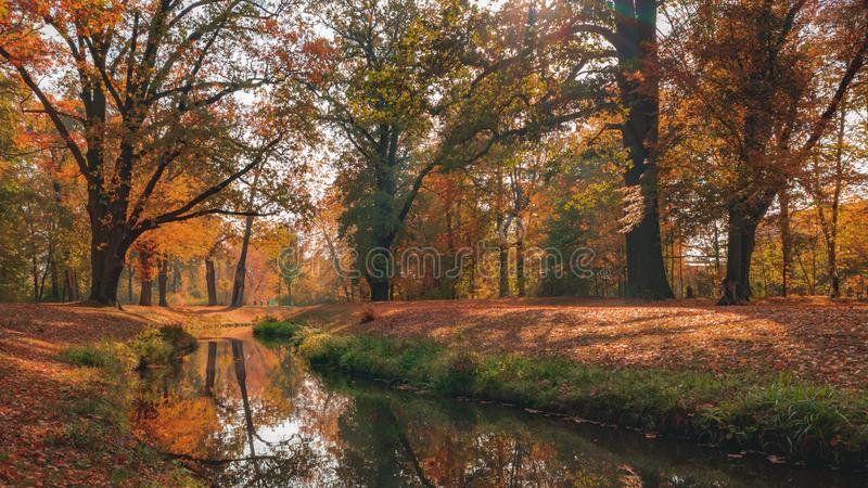 Beautiful autumn landscape with pleasant warm sunny light. Picture taken in Bad Muskau park, Saxony, Germany. UNESCO World. Heritage Site royalty free stock images