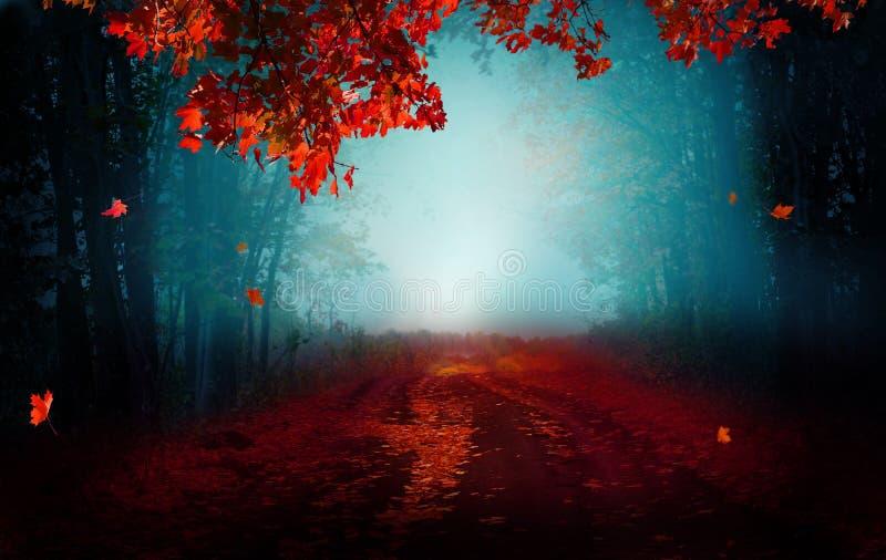 Fantasy background . Magic forest.Beautiful autumn landscape royalty free stock photos