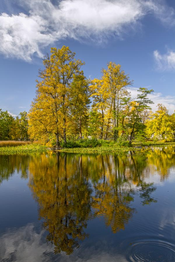 Beautiful autumn landscape. Yellow  trees and blue sky reflected in calm water. royalty free stock photography