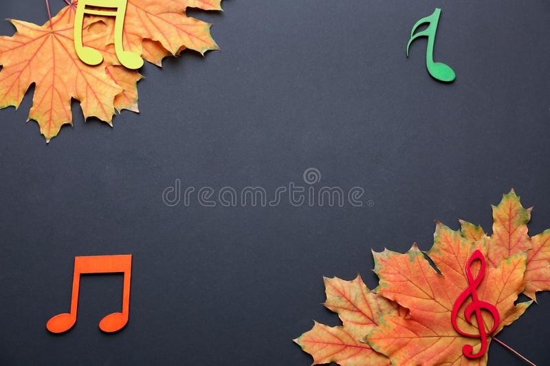 Beautiful autumn leaves with musical notes on dark background royalty free stock images
