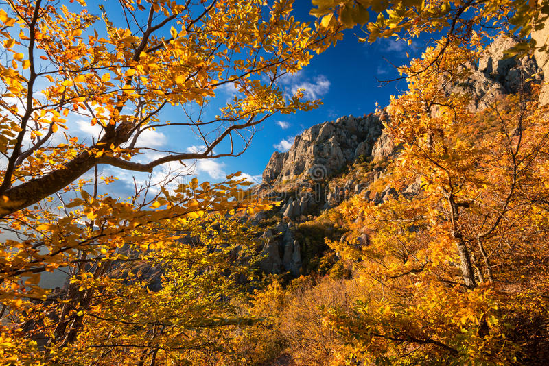 Beautiful Autumn Mountain Landscape At Bright Sunshine Day With Sunlit Trees On Background Of Blue Sky. Crimeaa, Russia royalty free stock images