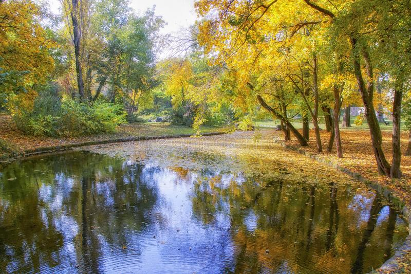 Beautiful autumn pictures of Tata English Park. One of the eternal themes with the coming of you in the beautiful colors, I would like to illustrate the photos royalty free stock photography