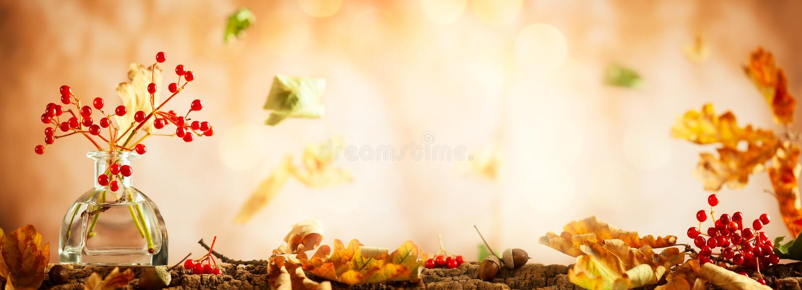 Beautiful autumn red berries and oak leaves in glass bottle. Autumn still life with royalty free stock photography