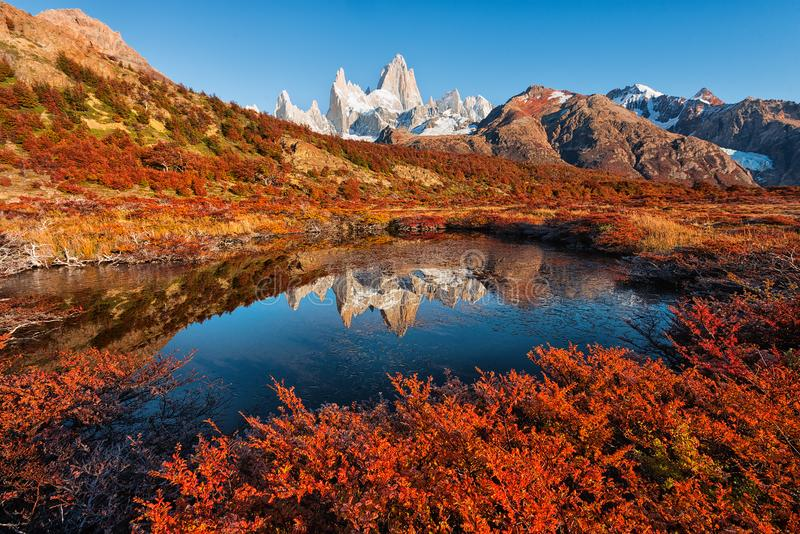 The beautiful autumn reflection of the Monte Fitz Roy Cerro Chalte royalty free stock images