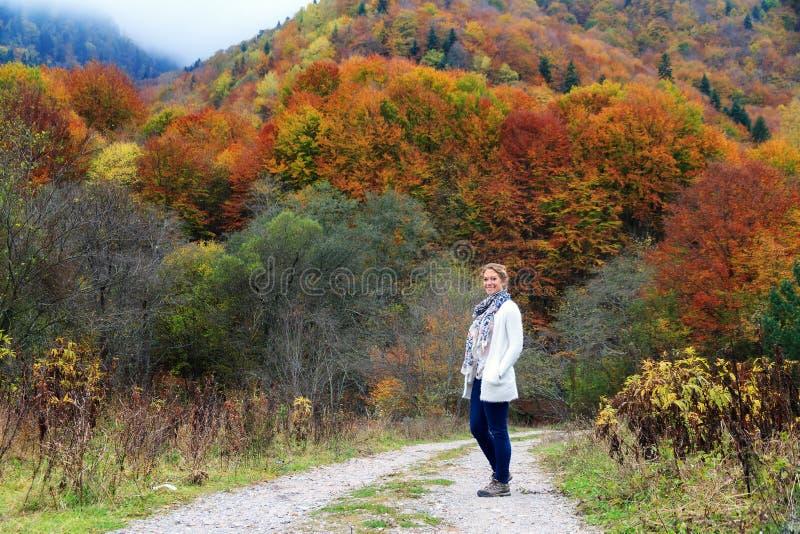 Beautiful autumn in the Rila mountains stock image